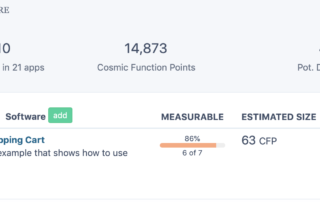 Software estimation and functional sizing