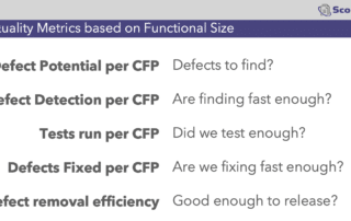 Improve Software Quality with Functional Sizing
